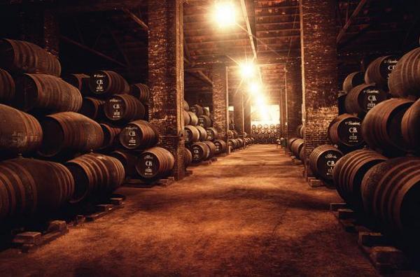 Bodega vino Olite barrica