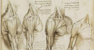 libertad ciencia fe anatomía
