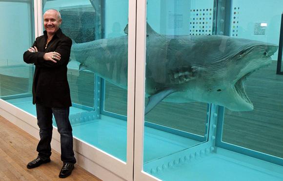 tiburon-hirst-2