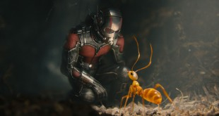 Ant-Man crítica review Marvel Evangeline Paul Rudd
