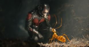 Ant-Man crítica review Marvel Evangeline Paul Rudd