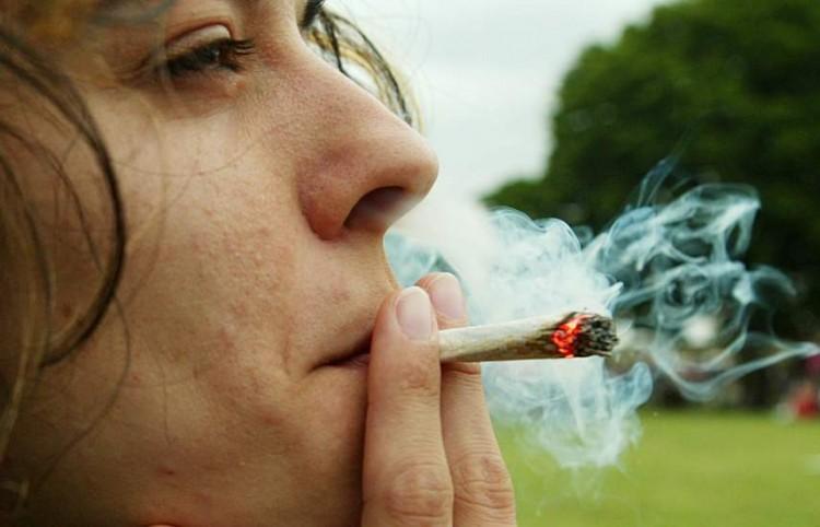Marihuana droga cannabis gerardo cavero antidroga