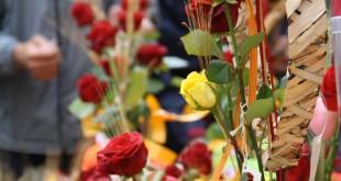 Sant Jordi diada libros rosas recomendaciones